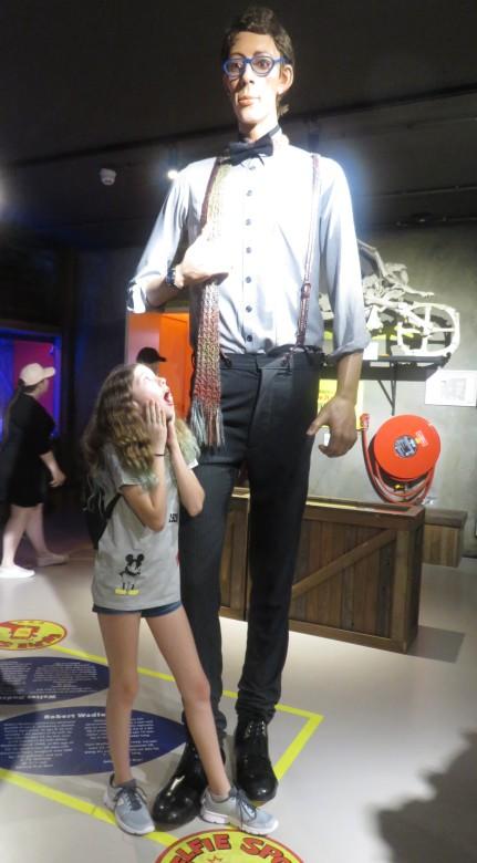 האיש הגבוה ביותר בעולם