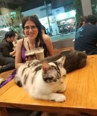 בית קפה לחתולים - CAT 'n' A CUP Cat Cafe