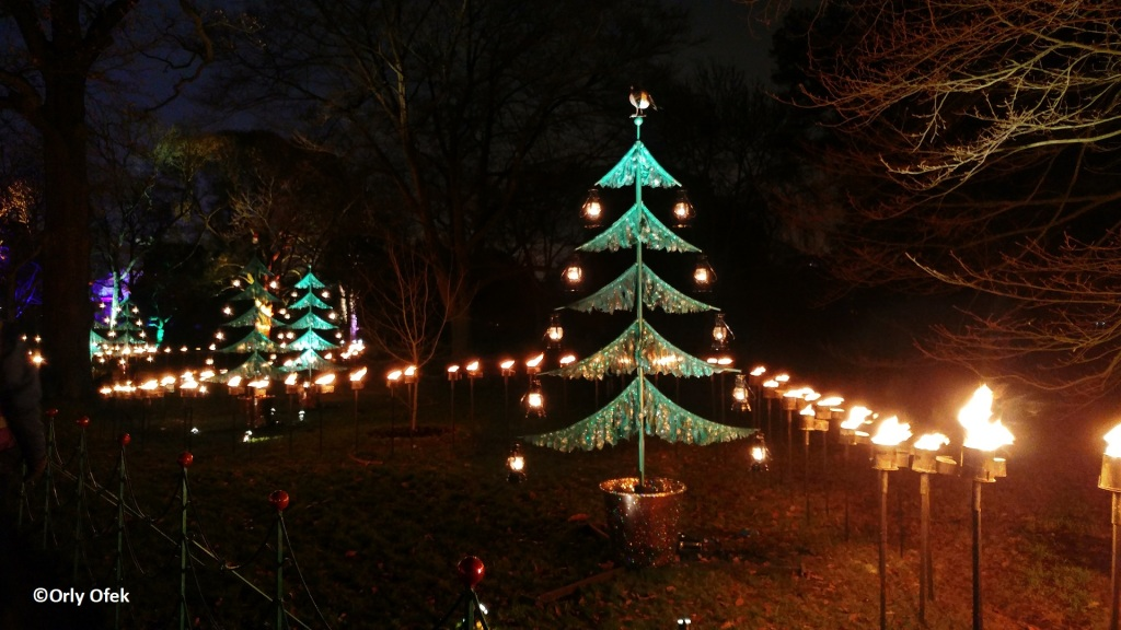 London-Christmas-Kew-Gardens-OrlyOfek39