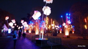 London-Christmas-Kew-Gardens-OrlyOfek40