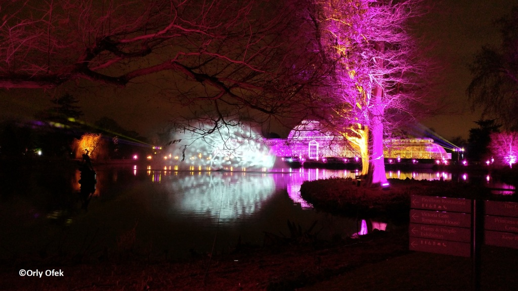 London-Christmas-Kew-Gardens-OrlyOfek41