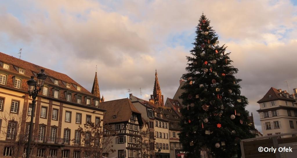 Strasbourg-Orly-Ofek-09
