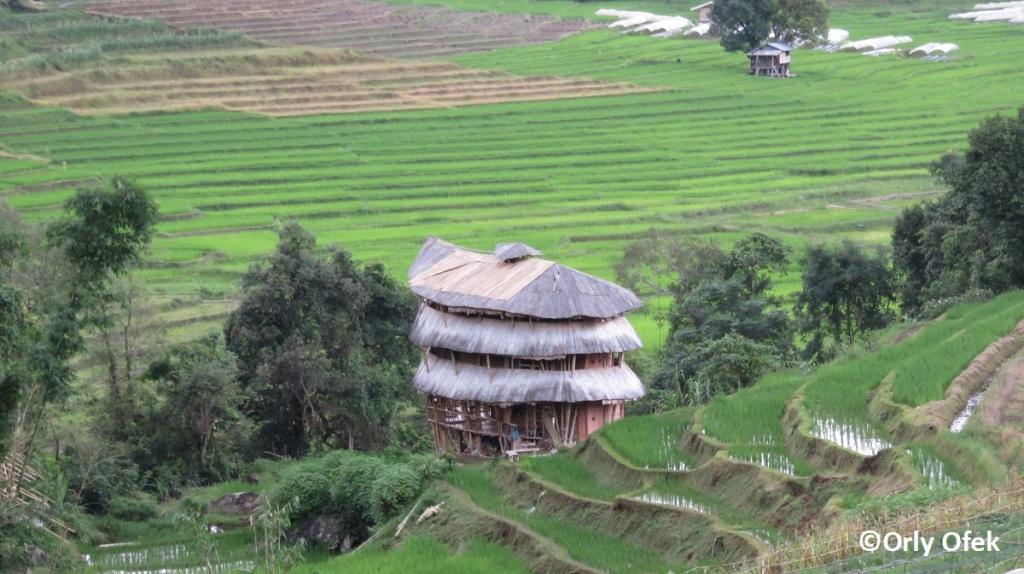 chiang-mai-doi-inthanon-orly-ofek-36