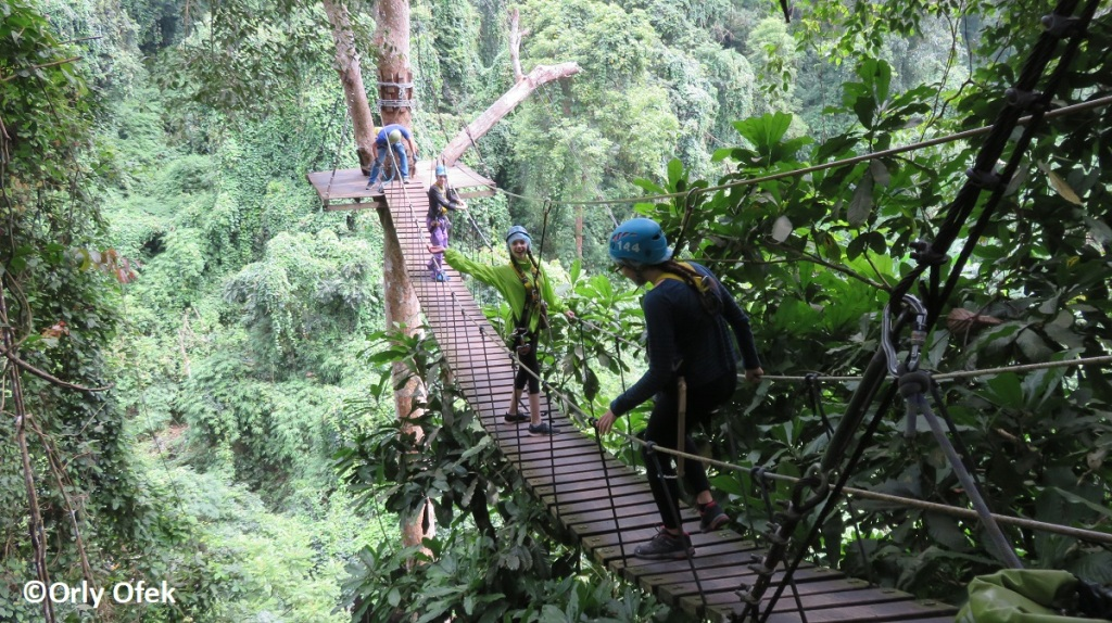 chiang-mai-eagle-track-zipline-orly-ofek-43