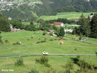 Tirol-Stubai-OrlyOfek-33